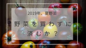 2019年、夏野菜の植え付け【スーパーで野菜を買わずに済むか】