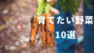 【家庭菜園】8月〜9月に植えたい野菜10選!初心者でも育てられる品種を紹介